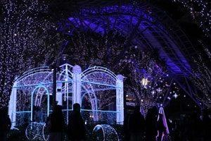 クリスマスイルミネーション東京画像