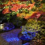 京都の紅葉のライトアップの穴場や時間、おすすめ所をご紹介!