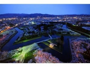 五稜郭公園の夜桜ライトアップ