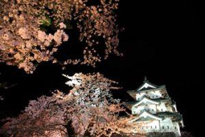 弘前城 夜桜