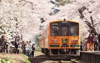 ゴールデンウィークの東北旅行!空いてる穴場のおすすめ桜と温泉でゆったり!