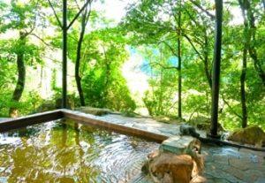 関東-日帰り温泉