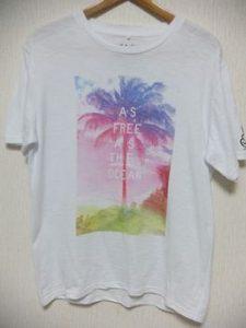 メンズTシャツ春写真
