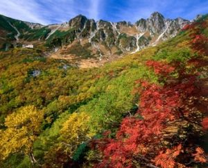 千畳敷カール 紅葉-画像