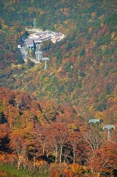 谷川岳 紅葉の写真