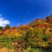 栗駒山 紅葉の画像
