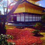 京都金閣寺周辺の紅葉穴場スポットのおすすめコースとライトアップ情報!