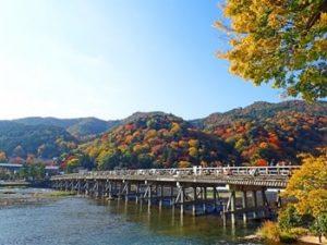 京都嵐山の紅葉の画像
