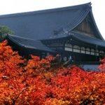 京都駅周辺の紅葉穴場スポットのおすすめコースとライトアップ情報!
