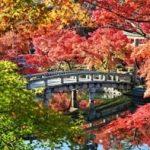 京都永観堂周辺の紅葉穴場スポットのおすすめコースとライトアップ情報!