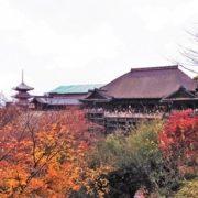 清水寺の紅葉の写真