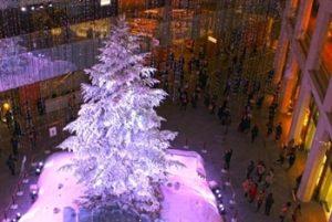 クリスマスイルミネーションの写真
